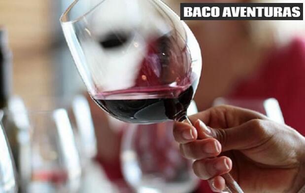 Paseo a caballo y degustación de vino