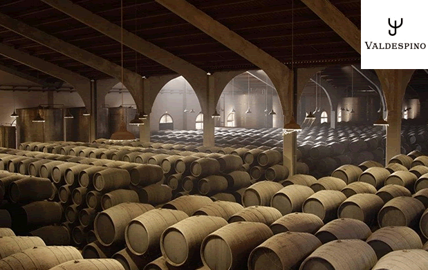 Cata de Vinos Bodegas Valdespino Granada Gourmet 2016