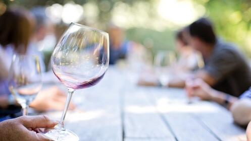 Visita a bodegas y cata de vino en Guadix