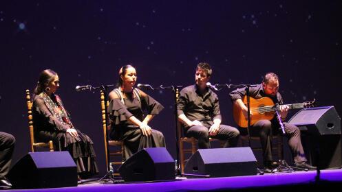 Entradas espectáculo flamenco, 29 noviembre