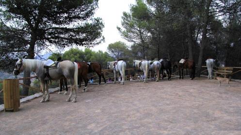 Paseo a caballo para 2 en Colomera