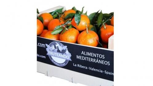 Caja de naranjas valencianas o mixta con mandarinas