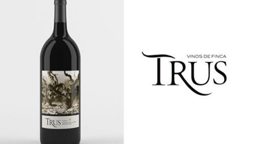 Cata de Vinos Palacios Vinoteca Granada Gourmet 2017
