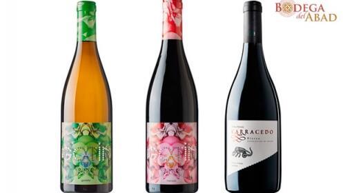 Cata de Vinos Bodega del Abad Granada Gourmet 2017