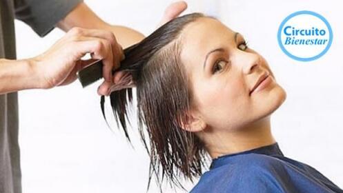 Sesión de peluquería: lavado + corte + peinado con opción a tinte