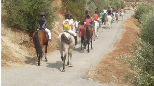 Campamentos de Verano para 1 persona 6 días Finca Malpasillo